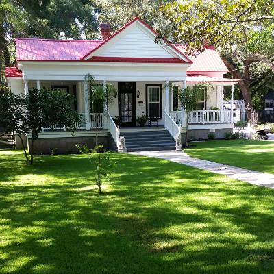 Walterboro Single Family Home For Sale: 1401 Wichman Street