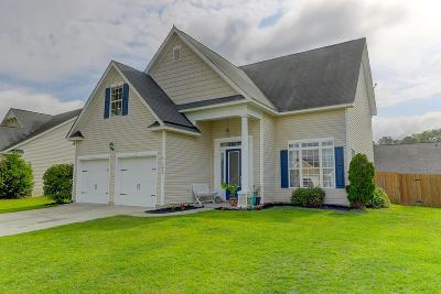 North Charleston Single Family Home For Sale: 7820 Magellan Drive