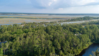 Charleston County Residential Lots & Land For Sale: 109 Blue Heron Pond Road