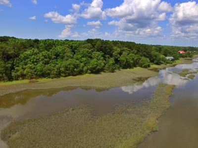 Johns Island Residential Lots & Land For Sale: 1435 River Road