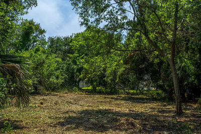 Edisto Beach SC Residential Lots & Land For Sale: $160,000