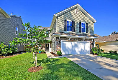 Mount Pleasant SC Single Family Home For Sale: $379,000