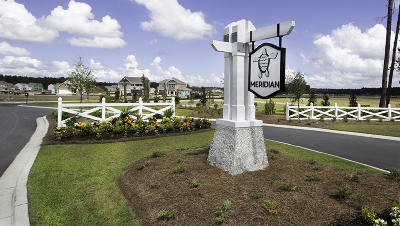 Summerville SC Single Family Home For Sale: $302,350