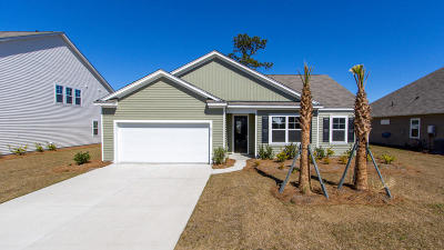 Johns Island Single Family Home For Sale: 2718 Sunrose Lane