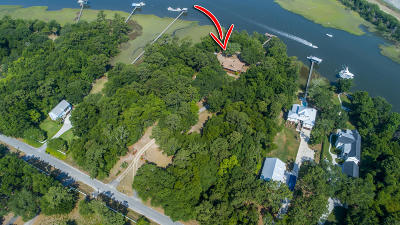 Charleston Single Family Home For Sale: 117 Bellpointe Lane