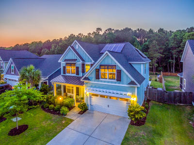 Berkeley County Single Family Home For Sale: 110 Carriage Hill Place