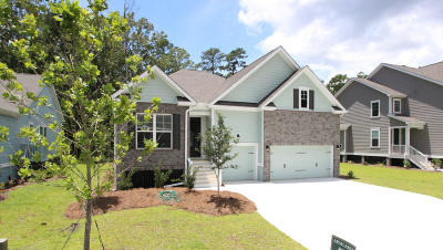 Charleston County Single Family Home For Sale: 2068 Syreford Court