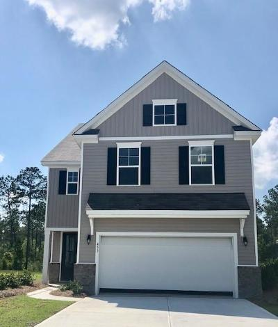 Summerville Single Family Home For Sale: 453 Zenith Blvd Court