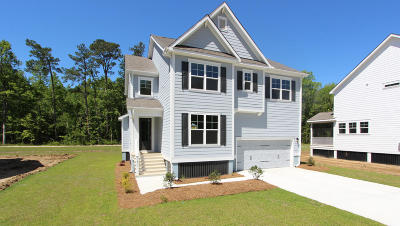 Charleston Single Family Home For Sale: 1406 Brockenfelt Drive