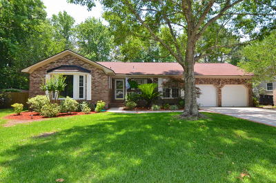 Goose Creek Single Family Home Contingent: 81 Lighthouse Drive