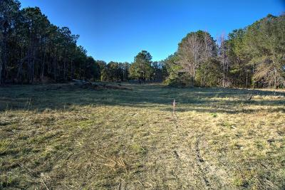 Residential Lots & Land For Sale: 3511 Bohicket Road #Lot 4