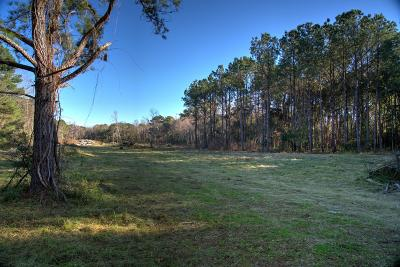 Residential Lots & Land For Sale: 3511 Bohicket Road #Lot 6