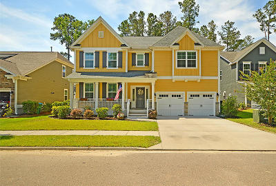 Summerville Single Family Home For Sale: 309 Ribbon Road