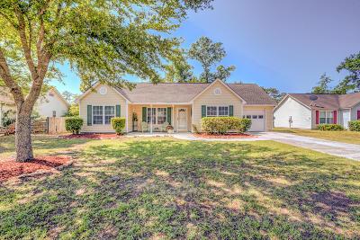 Johns Island Single Family Home For Sale: 2877 Thunder Trail