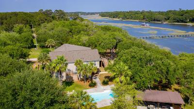 Johns Island Single Family Home For Sale: 3489 Bonnetts Drive