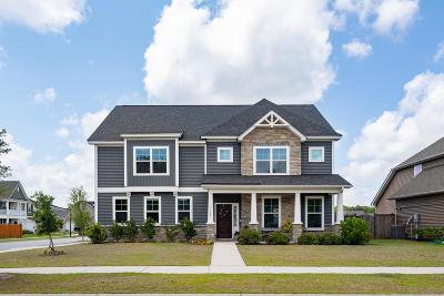 Johns Island Single Family Home For Sale: 3228 Arrow Arum Drive