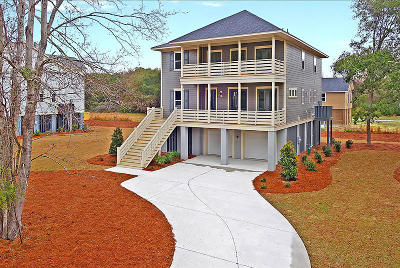 Charleston County Single Family Home For Sale: 2186 Brown Pelican Lane