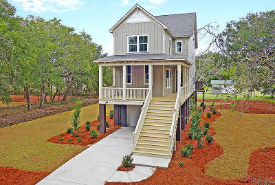 Berkeley County, Charleston County, Colleton County, Dorchester County Single Family Home For Sale: 2238 Brown Pelican Lane