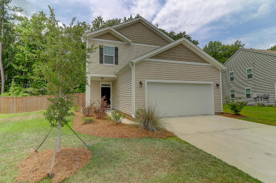 Single Family Home For Sale: 9811 Seed Street