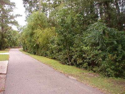 Residential Lots & Land For Sale: 2908 Roast Duck Lane