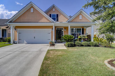 Berkeley County Single Family Home For Sale: 539 Nelliefield Trail
