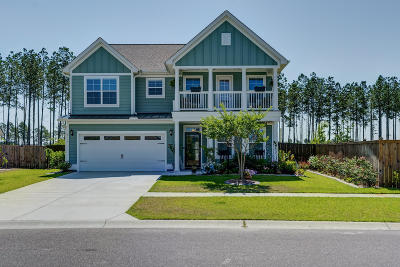 Summerville Single Family Home For Sale: 399 Whispering Breeze Lane