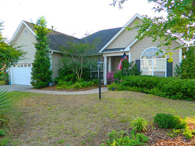 Johns Island Single Family Home For Sale: 1167 Hammrick Lane