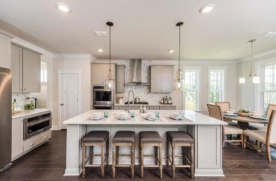 Charleston Single Family Home Contingent: 523 Amalie Farms Drive