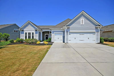 Summerville Single Family Home For Sale: 326 Regatta Way