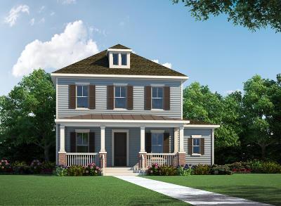 Berkeley County Single Family Home For Sale: 2721 Waker Street