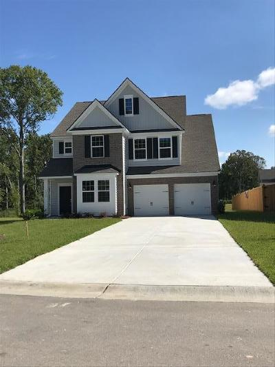 Ladson Single Family Home Contingent: 9904 Pin Cherry Court