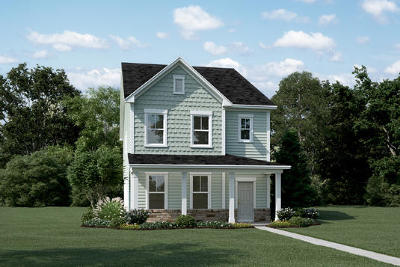 Charleston Single Family Home For Sale: 167 Rowans Creek Drive