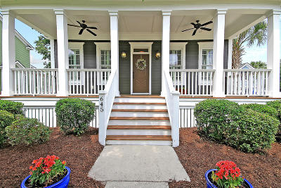 Charleston Single Family Home For Sale: 645 Cloudbreak Court
