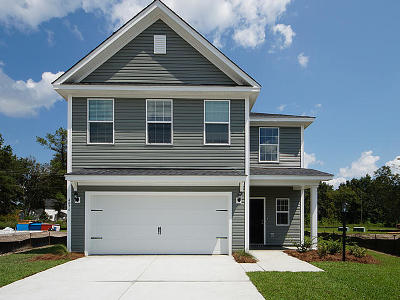 Single Family Home For Sale: 212 McClellan Way