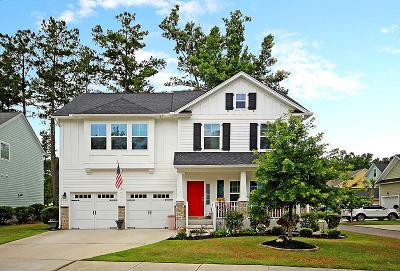 Summerville Single Family Home For Sale: 107 Tortoise Street