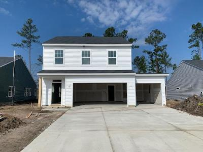 Single Family Home For Sale: 169 Lucca Drive