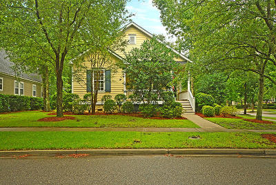 Charleston Single Family Home For Sale: 1017 Barfield Street