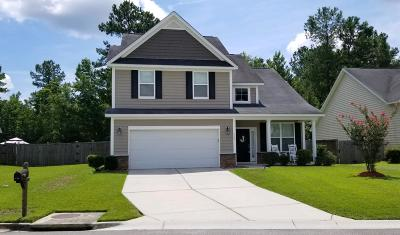 Moncks Corner Single Family Home For Sale: 206 Palmetto Village Circle