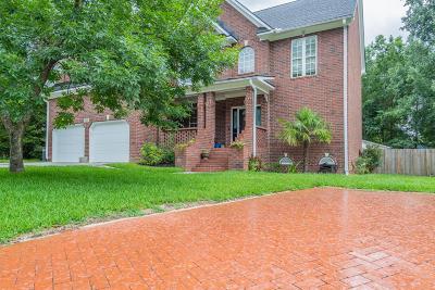 Summerville Single Family Home For Sale: 199 White Church Lane