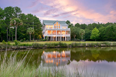 Charleston County Single Family Home For Sale: 451 Bulls Island Road