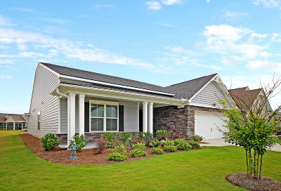 Summerville Single Family Home For Sale: 542 Tidewater Chase Lane