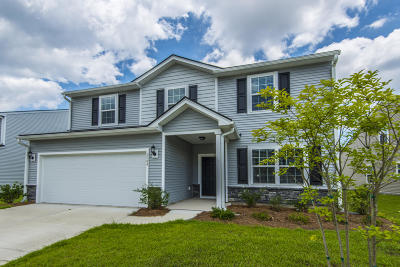 Charleston Single Family Home For Sale: 2684 Doubletree Court