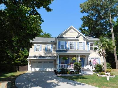 Charleston Single Family Home For Sale: 1228 Walleye Corner