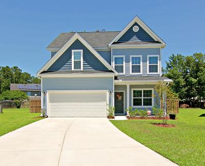 Summerville Single Family Home For Sale: 9664 Kestevan Court