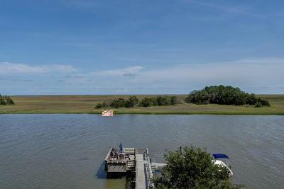 Charleston County Single Family Home For Sale: 959 Shellmore Lane