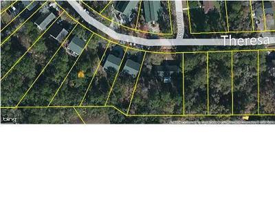 Residential Lots & Land Contingent: 1529 Theresa Drive