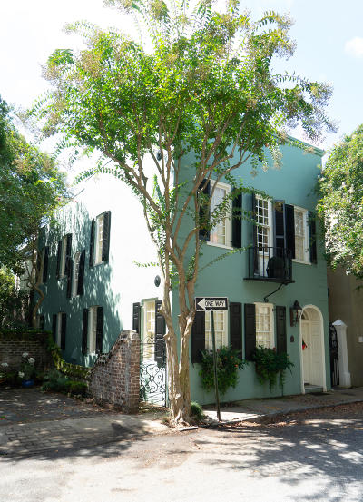 Charleston Single Family Home For Sale: 17 Tradd Street