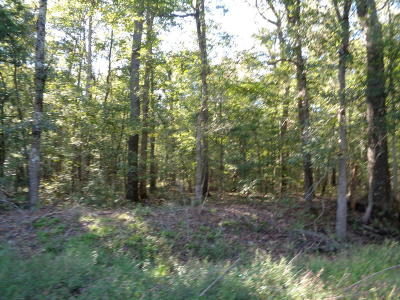 Awendaw Residential Lots & Land For Sale: 2 White Road
