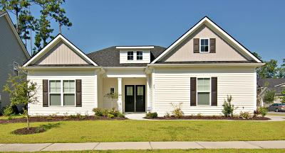 Summerville Single Family Home For Sale: 407 Kilarney Road