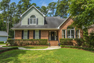 Summerville Single Family Home For Sale: 112 Delaney Circle